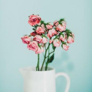 Voeux_2019_scritto_!_redacteur_web_angers_nantes_fleurs_