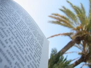 Scritti_article_bertrand_belin_blog_